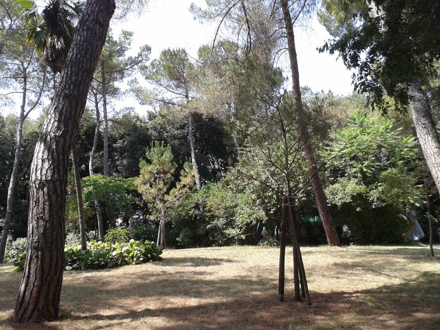 Villa Ubertini3